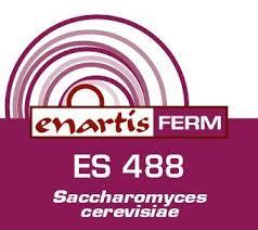 ES 488